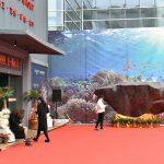 Xiamen Stone Çin - Xiamen Uluslararası Mermer ve Tas Fuarı